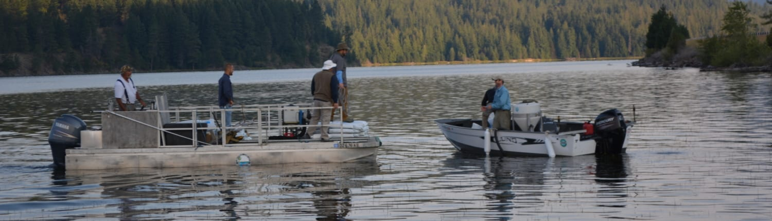 Biologist completing water quality monitoring picture
