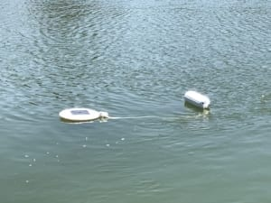Water buoy with tether image
